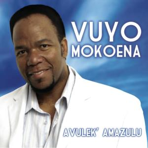 Album Avulek' Amazulu from Vuyo Mokoena