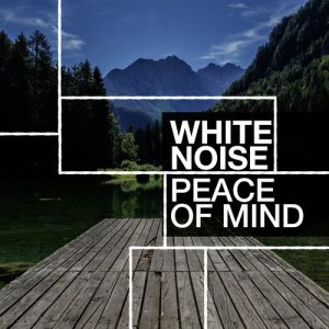 Album White Noise: Peace of Mind from Concentration