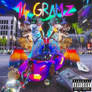 Album 14 GRAMZ (feat. Valee) (Explicit) from Skyxxx