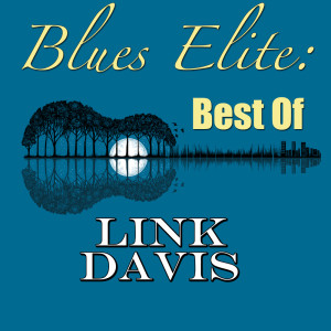 Album Blues Elite: Best Of Link Davis from Link Davis