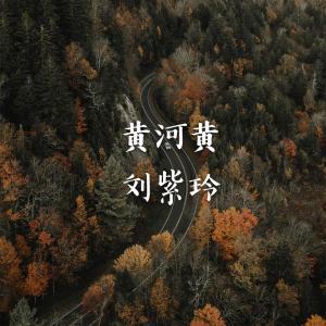 劉紫玲的專輯黃河黃