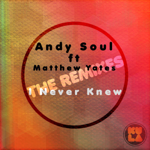 Album I Never Knew (The Remixes) from Andy Soul