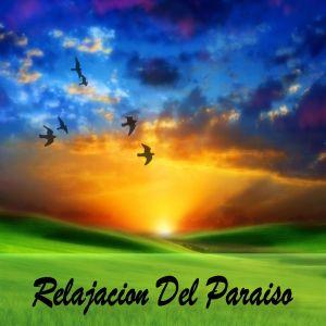 Relaxing Music的專輯Relajación Del Paraíso
