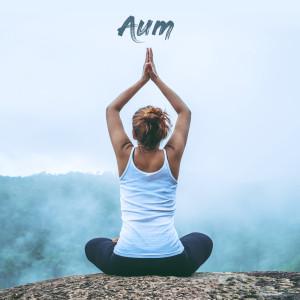 Album Aum from Aum Meditación