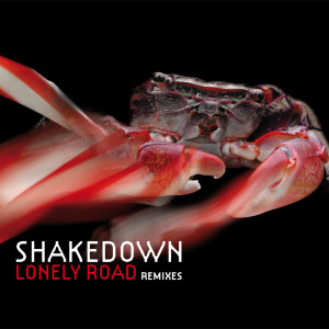 Album Lonely Road from Shakedown