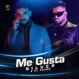 Album Me Gusta from Silver