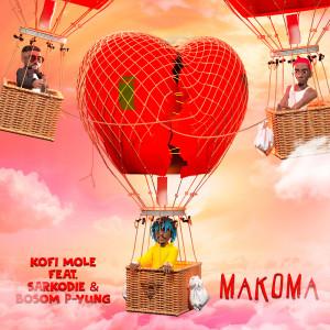 Makoma (feat. Sarkodie & Bosom P-Yung)