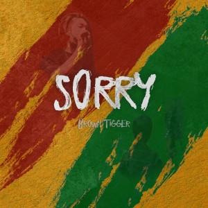 Brown Tigger的專輯SORRY
