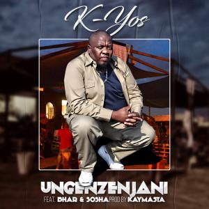Album Ungenzenjani from K-Yos