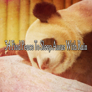 Listen to Rain Regrowth song with lyrics from Rain Sounds & White Noise