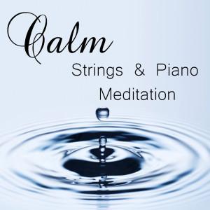 Royal Philharmonic Orchestra的專輯Calm Strings & Piano Meditation