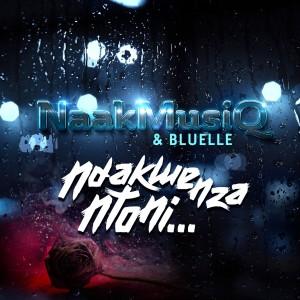 Album Ndakwenza Ntoni from Bluelle