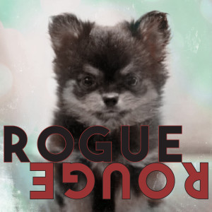 Album Rogue Rouge from 엠버