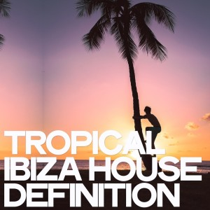 Album Tropical Ibiza House Definition from Various Artists