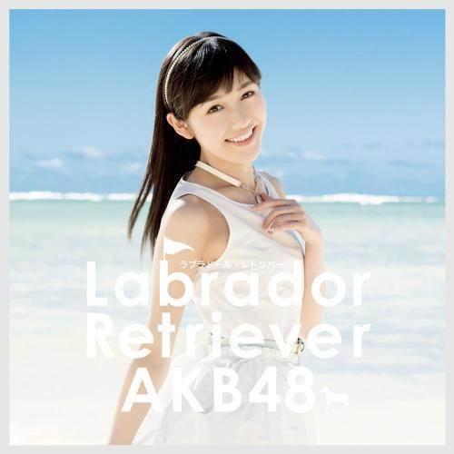 ฟังเพลงอัลบั้ม Labrador Retriever (Type 4)