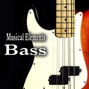 Sound Ideas的專輯Musical Elements – Bass Sound Effects