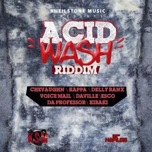 Album Acid Wash Riddim from Various Artists