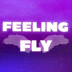 อัลบัม Feeling Fly ศิลปิน Dian Solo