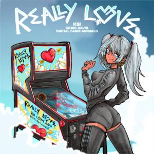 Listen to Really Love (feat. Craig David & Digital Farm Animals) song with lyrics from Ksi
