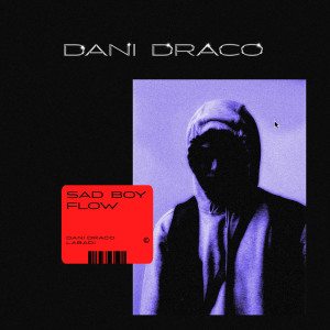 Album Sad Boy Flow from Dani Draco
