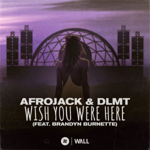 Album Wish You Were Here (feat. Brandyn Burnette) from DLMT