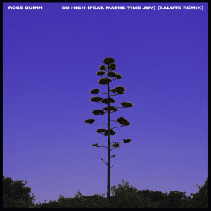 Album So High (Salute Remix) from Ross Quinn