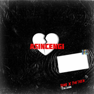 Album Asincengi from YungxPanther