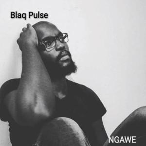 Album Ngawe from Blaq Pulse