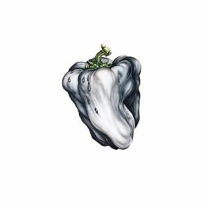 Album White Pepper from Ween