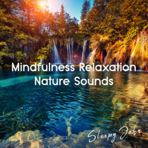Album Mindfulness Relaxation Nature Sounds from Sleepy John