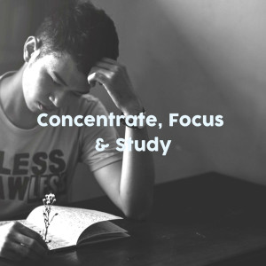 Album Concentrate, Focus & Study from Concentration Study