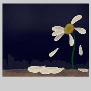 อัลบัม ดอกไม้โพลารอยด์ (Explicit) ศิลปิน POTTY RHOCA