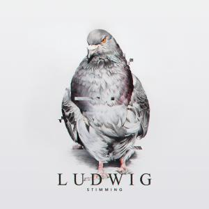 Album Ludwig from Stimming