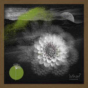 Album Who (Haze-M Remix) from DJ Chus