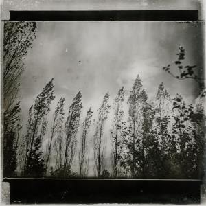 Pro Sounds of Nature的專輯Be Optimist for a Better Future - Spa Treatments, Nature's Blessing, Sweet Sensations