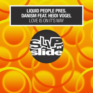 Album Love Is On It's Way (feat. Heidi Vogel) from Danism
