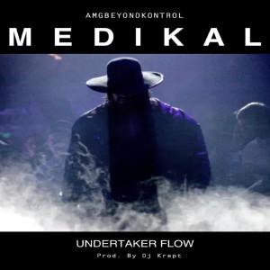 Undertaker Flow (Explicit)