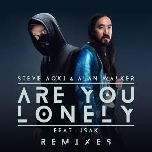 อัลบัม Are You Lonely (Remixes) ศิลปิน Steve Aoki