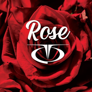 TQ的專輯Rose