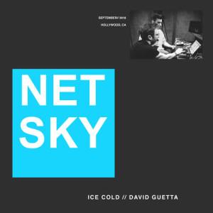 Netsky的專輯Ice Cold
