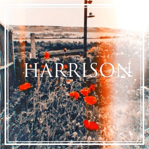 Album Knot Around Time from Harrison