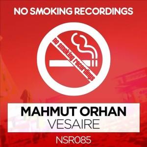 Listen to Vesaire (Dj Tarkan Mix) song with lyrics from Mahmut Orhan