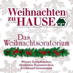 "收聽Wiener Symphoniker的Weihnachtsoratorium, BWV 248, Pt. I: No. 6. ""Und sie gebar ihren ersten Sohn""歌詞歌曲"