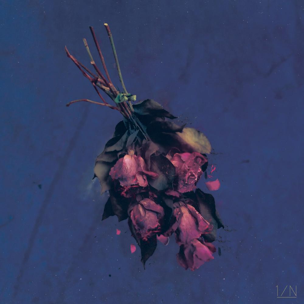 ฟังเพลงใหม่อัลบั้ม A Bloom At Midnight