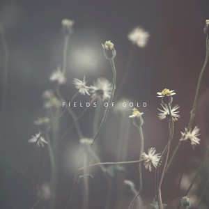 Listen to Fields of Gold song with lyrics from Ben Laver