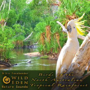 Album Birds of the North Australian Tropical Rainforest (feat. Dr Eric Fassbender) from Dr Eric Fassbender