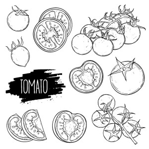 Album Tomato from Ella Fitzgerald & Louis Armstrong