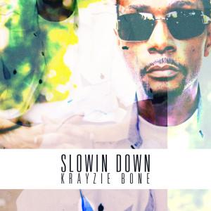 Album Slowin Down from Krayzie Bone