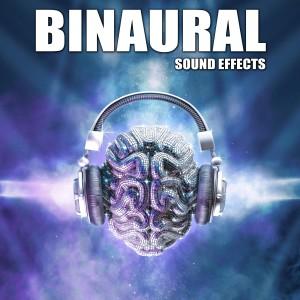 Sound Ideas的專輯Binaural Sound Effects