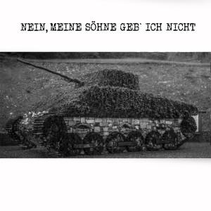 Album Nein, meine Söhne geb´ ich nicht from Reinhard Mey